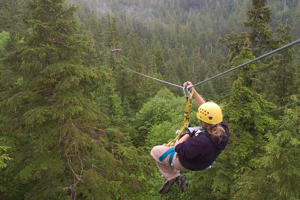 Rainforest Canopy u0026 Zipline Expedition & Rainforest Canopy u0026 Zipline Expedition | Tours in Alaska
