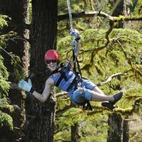 Rainforest-Canopy-&-Zipline-Expedition---Spirit-of-Alaska.jpg